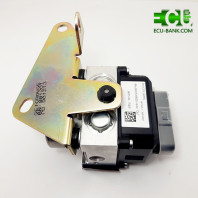 واحد الکترونیکی ترمز ای بی اس، ABS ساینا (X200) ، برند BWI
